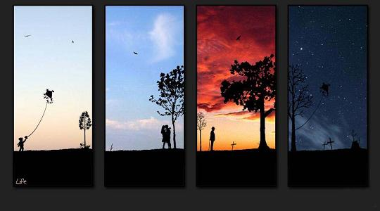 Life in four Shots